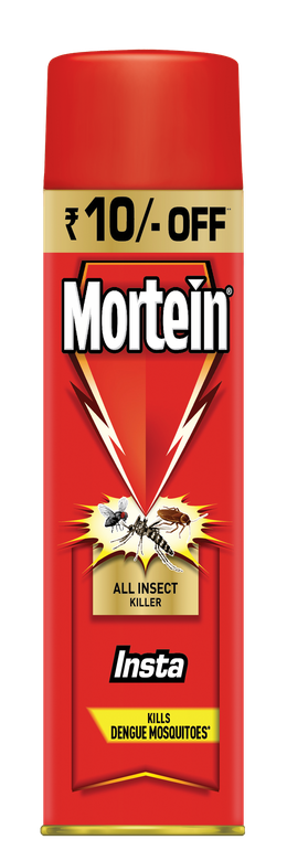 MORTEIN  INSTA ALL INSECT KILLER 200 ML