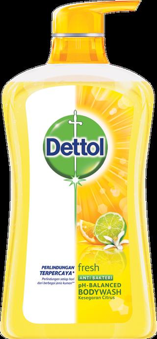 Sabun Cair Anti Bakteri Dettol Fresh (625ml)