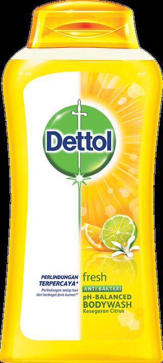 Sabun Cair Anti Bakteri Dettol Fresh (300ml)