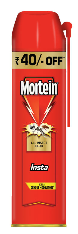 MORTEIN  INSTA  ALL INSECT KILLER 600 ML