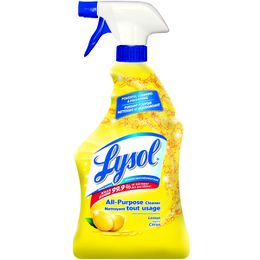 Lysol® All-Purpose Cleaner