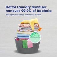 Dettol Anti-Bacterial Laundry Sanitiser Natural Eucalyptus 1.25L